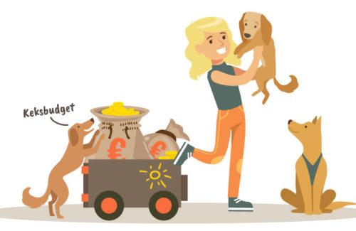 Angebotsformate-Dogwalker-Livetraining-Website